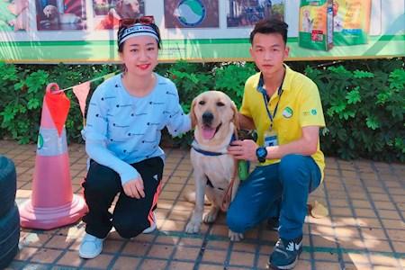 广州雷米高品牌携手一直播主播吴彦祖妹妹为导盲犬发声直播互动丨公益直播丨网红线下直播