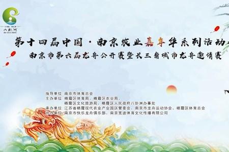 2018第六届南京市龙舟公开赛