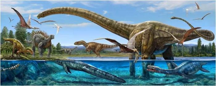 【深图科普讲坛】我是小小科学家——走进恐龙世界